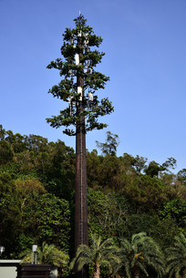 5G信号塔
