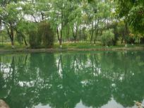 景区里的湖水一角