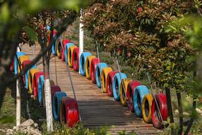 农业生态园园林景观桥