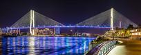 中国上海南浦大桥景观照明全景