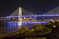 中国上海南浦大桥与黄浦江东岸建筑景观照明