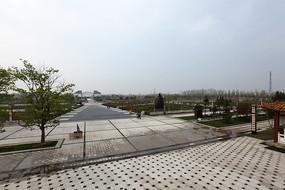 菏泽牡丹园园林景观