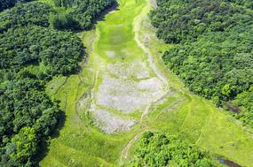 森林与干涸的河床