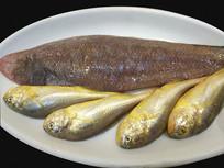 餐厅生食材摆盘-野生小黄鱼