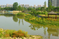 成都市中和湿地公园城市倒影