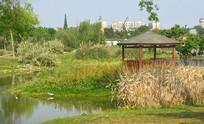 成都市中和湿地公园凉亭