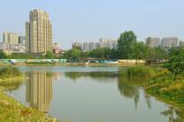 成都市中和湿地公园水景