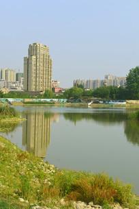 成都市中和湿地公园水面倒影