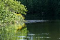 河边桃树野花倒影