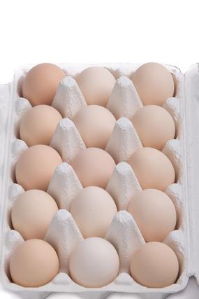 装在纸盒里的鸡蛋