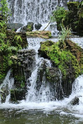 局部瀑布和岩上绿植