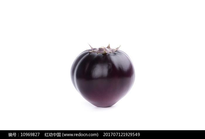 白背景下的一个圆茄子图片