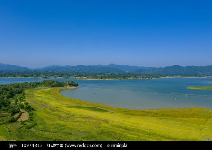 初夏湖上好风光图片