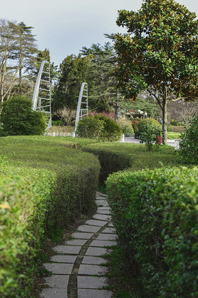 青岛中山公园景观-曲径通幽