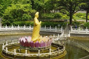 青岛湛山寺-观音菩萨像