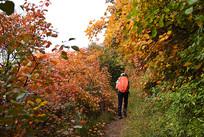 秋天户外登山