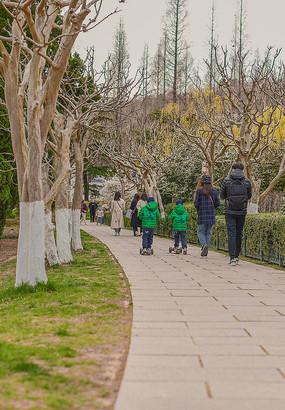 公园里春天的脚步
