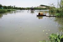 古城湖景和乌篷船