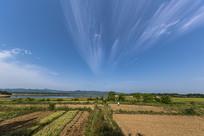 美丽的田园田野