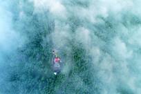 大兴安岭晨雾中的通信信号塔