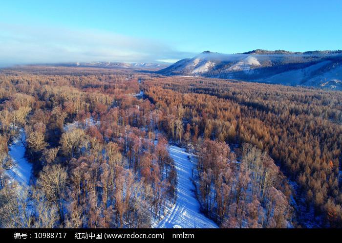 大兴安岭冬季林海雪原风光图片