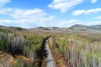 大兴安岭早春山林公路风景