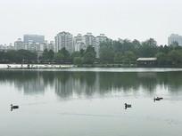 大宁灵石公园湖面景色