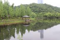 湖水边的小屋