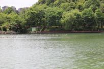 湖水风景一角