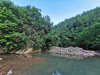 绿色的森林河谷