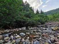 绿色森林河谷自然风光