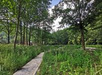 绿色生态农家乐健身步道