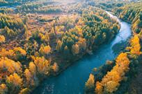 航拍蓝河金色树林