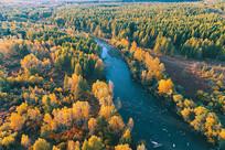 航拍森林河金色风景