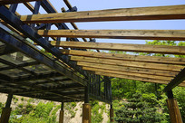 青岛植物园凉亭木架