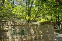 青岛植物园岩石园石刻