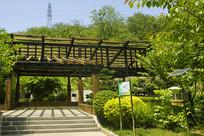 青岛植物园园林建筑-凉亭