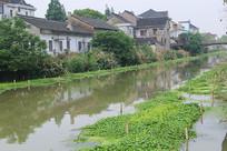 水乡河道管理