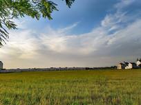 乡村美景图