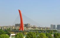 成都世纪城路跨府河大桥