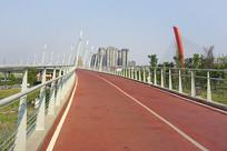 成都竹桥和世纪城路跨府河大桥