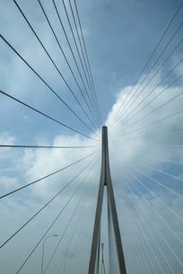 斜拉桥桥柱竖构图