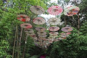 风景路上的油纸伞