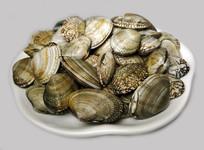一盘新鲜贝壳