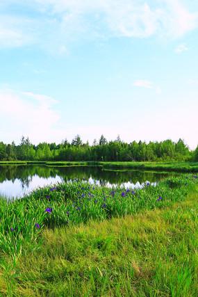 植物丰茂的大兴安岭马兰湖