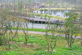 成都白鹭湾-生态湿地风光