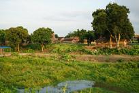 村庄建筑风景