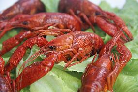 特写新鲜蔬菜龙虾