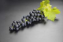 绿叶黑色葡萄