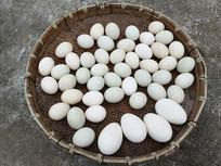 农家一筐鹅蛋
